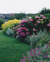 mla102550_0807_garden.jpg