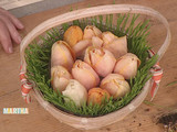 2078_011807_tulip_bask.jpg