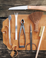 bonsai-tools-mld108122.jpg