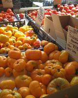 edfblg_082608_tomatoes.jpg