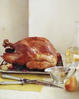 la102874_1107_turkey_s.jpg