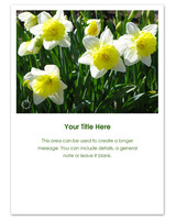pingg-summer-daffodils.jpg
