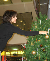 radio_1208_tree_trim_3.jpg