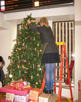 radio_1208_tree_trim_7.jpg