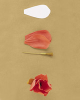 How to make crepe paper flowers martha stewart tulip ht spr01ml243ff2g mightylinksfo