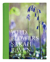 wild-flowers-mld109640.jpg