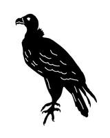 1004_spooky_buzzardbird.jpg