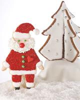 4065_121108_santacookie.jpg