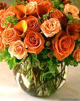 a98551_0301_flowerfrog2.jpg
