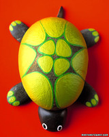 a99348_win06_turtlegrid.jpg
