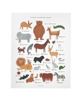 animal-poster-mld108412.jpg