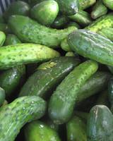 edfblg_082608_cucumbers.jpg