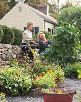 gardening-0372-md109340.jpg