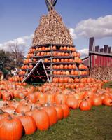 A Pumpkin Hut at the Great Pumpkin Festival