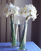 la100846_0405_daffodils.jpg