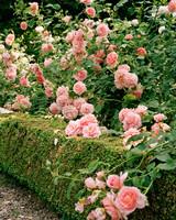 marella-agnelli-flowers.jpg