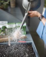 seed-sowing-4-mld108042.jpg