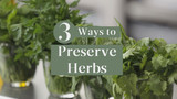 3_ways_to_preserve_herbs.jpg