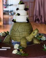 bagold_turtle_at_wedding.jpg