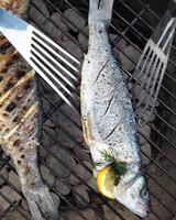 grilled-fish-7-mld110112.jpg