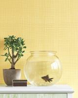 mld104736_0509_fish_wall.jpg