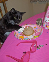 ms_celebrate_catsparella.jpg