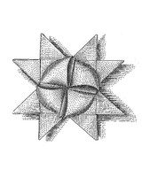 msl_1210_paper_star_ht18.jpg