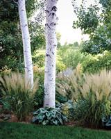 ogden-garden-224-d111601.jpg