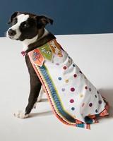 dog cape anthropologie