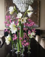 sharkey-instagram-lilies.jpg