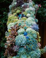 mla100952_0405_succulents.jpg