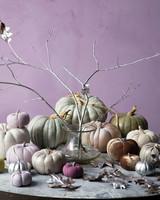 mld104657_1109_pumpkins16.jpg