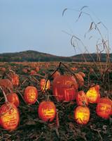 pumpkin-grave-1010sip2104.jpg