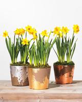 gold-leaf-pots-586-d111871.jpg