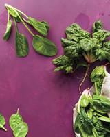 med106601_0411_sea_spinach.jpg