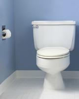 toilet_istock_000004594383.jpg