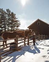 billings-farm-0612-md109181.jpg