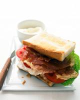 edf_jun06_hyt_pros_sandwich.jpg