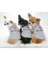 pets_0211_12639356_20127810.jpg