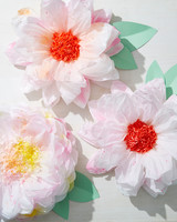 pom-pom-flowers-beauty-8692.jpg