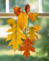 a99191_halloweensip07_leaves.jpg