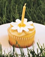 daisys-birthday-ms1029-cake2.jpg
