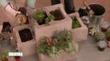 modular_succulent_planters_1.jpg