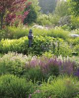 garden-northwind-002-md109062.jpg