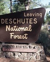 national-forest-sign-md108103.jpg