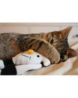 pets_at_play_6414612_14151026.jpg