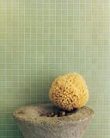 bathing-beauty-01-d100363-0915.jpg