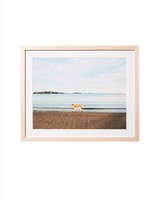 framed-pet-photo-221-d112972_l.jpg