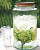 garden-party-lemonade-md107635.jpg