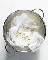 ricotta-beauty-v1-207-md109977.jpg